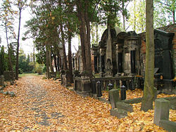 Old Jewish Cemetery of Wroclaw (Poland) - German Grave35.jpg