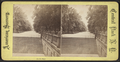 On the Mall, from Robert N. Dennis collection of stereoscopic views.png