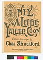 Only a little yaller coon (NYPL Hades-464265-1166039).jpg
