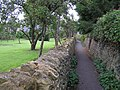 Orchard and path, Ilmington - geograph.org.uk - 1468793.jpg