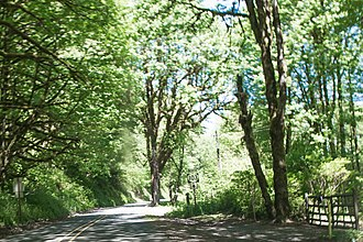 Oregon Route 103 - Image: Oregon Highway 103 North