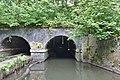 Otters Tunnel 5.jpg