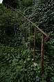 Overgrown Stairway - geograph.org.uk - 489459.jpg