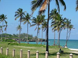 Oyster Bay, Tanzania - Indian Ocean