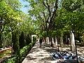 PALMA de MALLORCA, AB-077.jpg