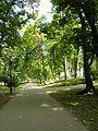 PL Nałęczów park4.jpg
