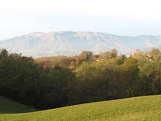 Montello (hill) - View from Montello towards the Alps