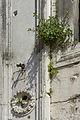 Palazzo Camerlenghi a Rialto dettaglio facciata Venezia 4.jpg