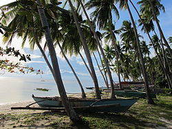 Paliton Beach, Siquijor, Philippines.JPG