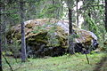 Paluküla boulder 2011.JPG