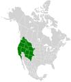 Papilio rutulus range map.PNG