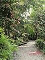 Parco della Villa Pallavicino - Stresa - DSC03042.JPG
