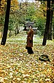 Park in autumn.jpg