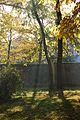Park pałacowy jesienią 06.JPG