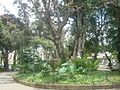 Parque España. San José. Costa Rica (3).JPG