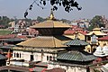 Pashupatinath Temple 2017 122.jpg