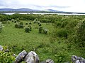 Pasture, Kinvarra Bay and the mountains of the Burren - geograph.org.uk - 1313114.jpg