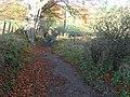 Path down Stey Brae - geograph.org.uk - 606263.jpg