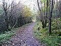 Path near Auchinstarry - geograph.org.uk - 1006312.jpg