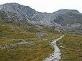 Path to Bealach a' Choire Ghairbh - geograph.org.uk - 527618.jpg
