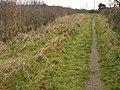 Path to Cranfleet Lock - geograph.org.uk - 1102760.jpg