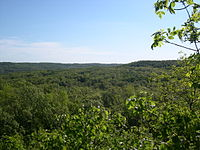 Pembina valley provincial park cranberry hollow.jpg