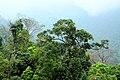 Phong cảnh núi rừng Tây Thiên - panoramio.jpg