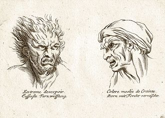 Physiognomy - Illustration in a 19th-century book about physiognomy