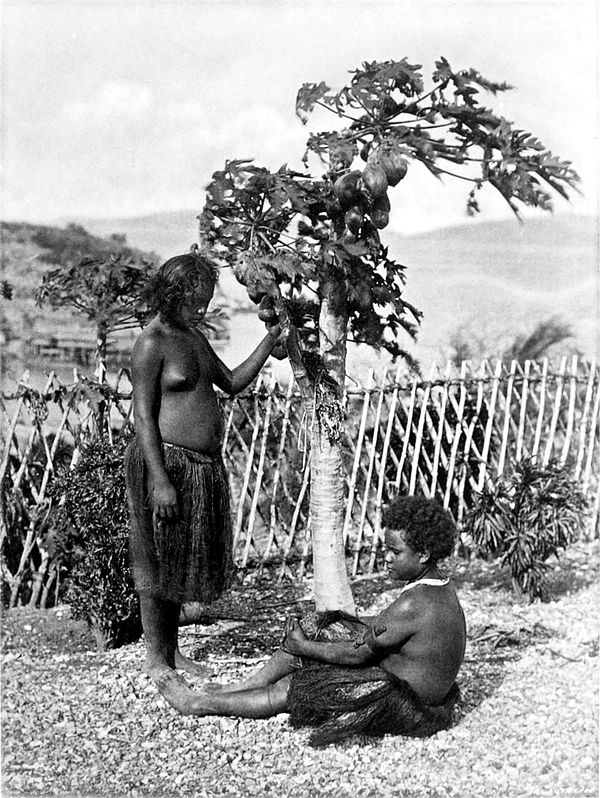 Black and white photograph of two nearly naked women beside a tree.