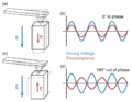 Piezoresponse of parallel and antiparallel domains.png