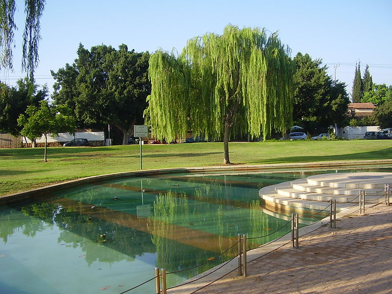 גן אורי גורדון-ערבה בוכיה