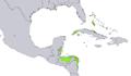 Pinus caribaea distribution map.png