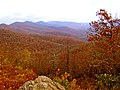 Pisgah National Forest (8143242853).jpg