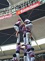 Plaça de Braus de Tarragona - Concurs 2012 P1410223.jpg