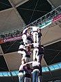 Plaça de Braus de Tarragona - Concurs 2012 P1410446.jpg