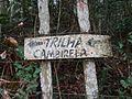 Placa indicando o caminho para a trilha da Cambirela.jpg