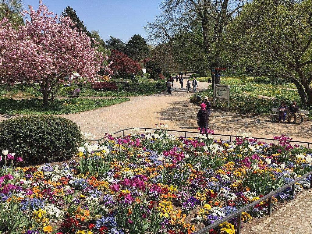 Planten un Blomen im Frühling