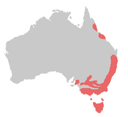 Tasmania and the coast of New South Wales, Victoria, and mid-Queensland
