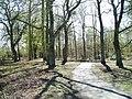 Plean Country Park - geograph.org.uk - 160347.jpg