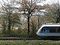 Pol-Sepid railway - Shirgah.jpg