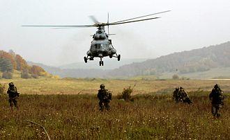 Polish Special Forces - Polish Special Forces in  Lithuania