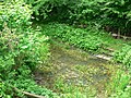 Pond, Hollybush Conservation Centre, Leeds - geograph.org.uk - 184305.jpg