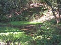 Pond in Binns Wood near Far Binns, Southowram - geograph.org.uk - 253756.jpg