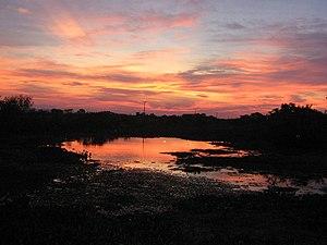Português: Cair da noite no Pantanal.