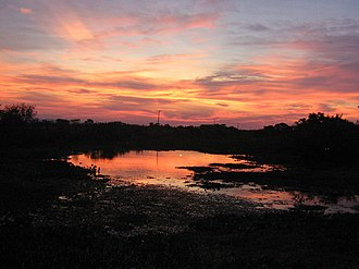 Mato Grosso do Sul - Sunset in Pantanal.