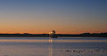 Prince Rupert Harbour Freighter at Sunset.jpg