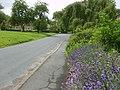 Pump Alley gardens - geograph.org.uk - 480192.jpg