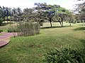 Putrajaya, the Botanical Garden 14.jpg