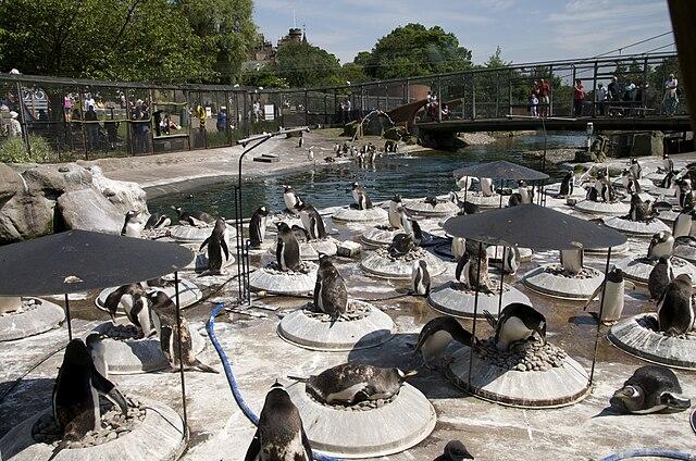 Zoológico de Edimburgo