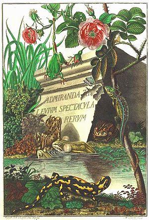 August Johann Rösel von Rosenhof - Rosenhof plate
